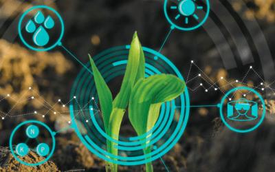 IBISA crop loss assessment stress test.