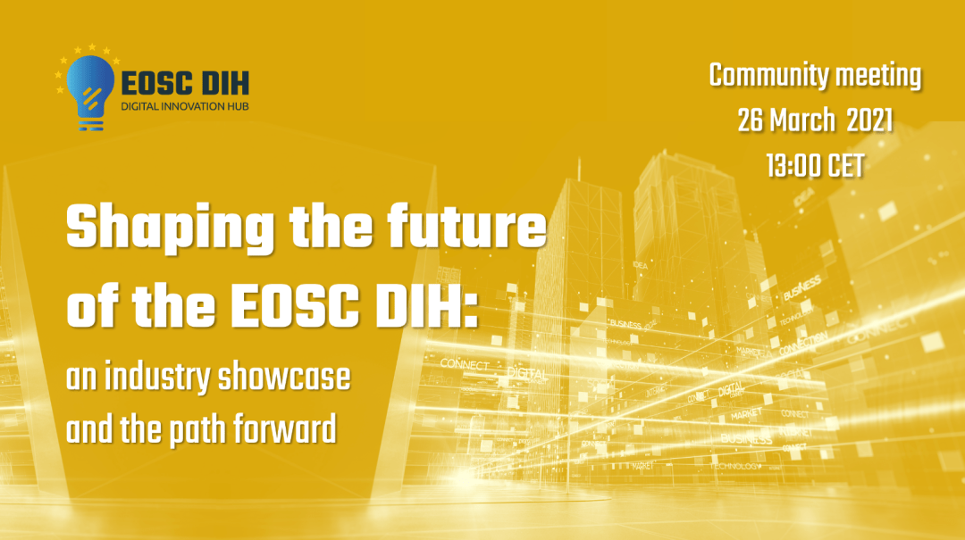 Shaping the future of the EOSC DIH